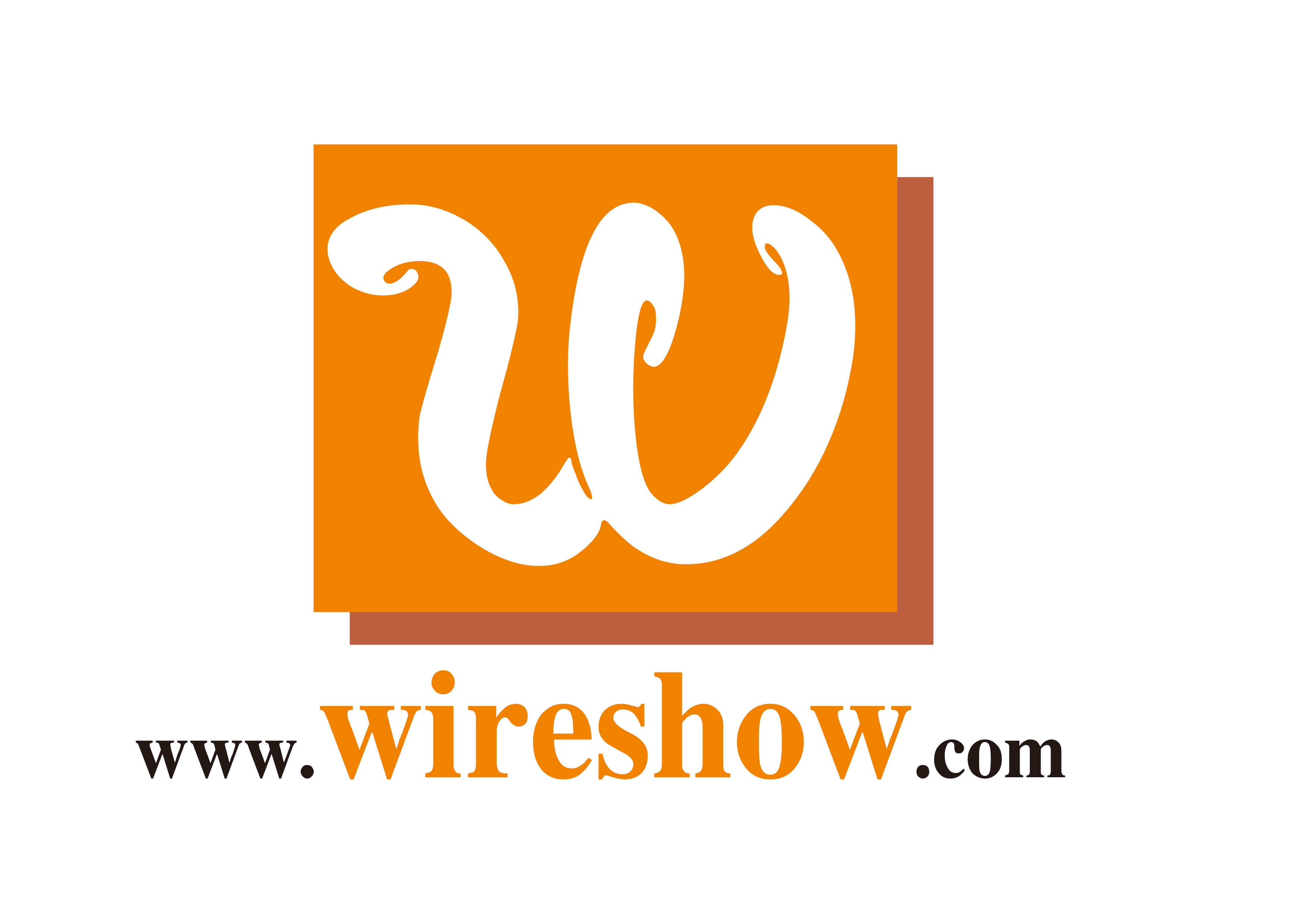 WireShow China